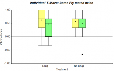 Same Fly tested twice WW New Drug (First 6 choices)